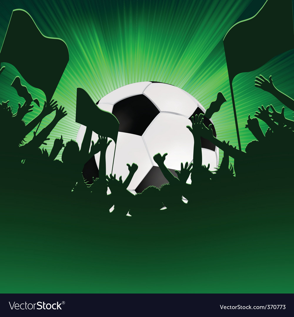 Football fans crowd vector image