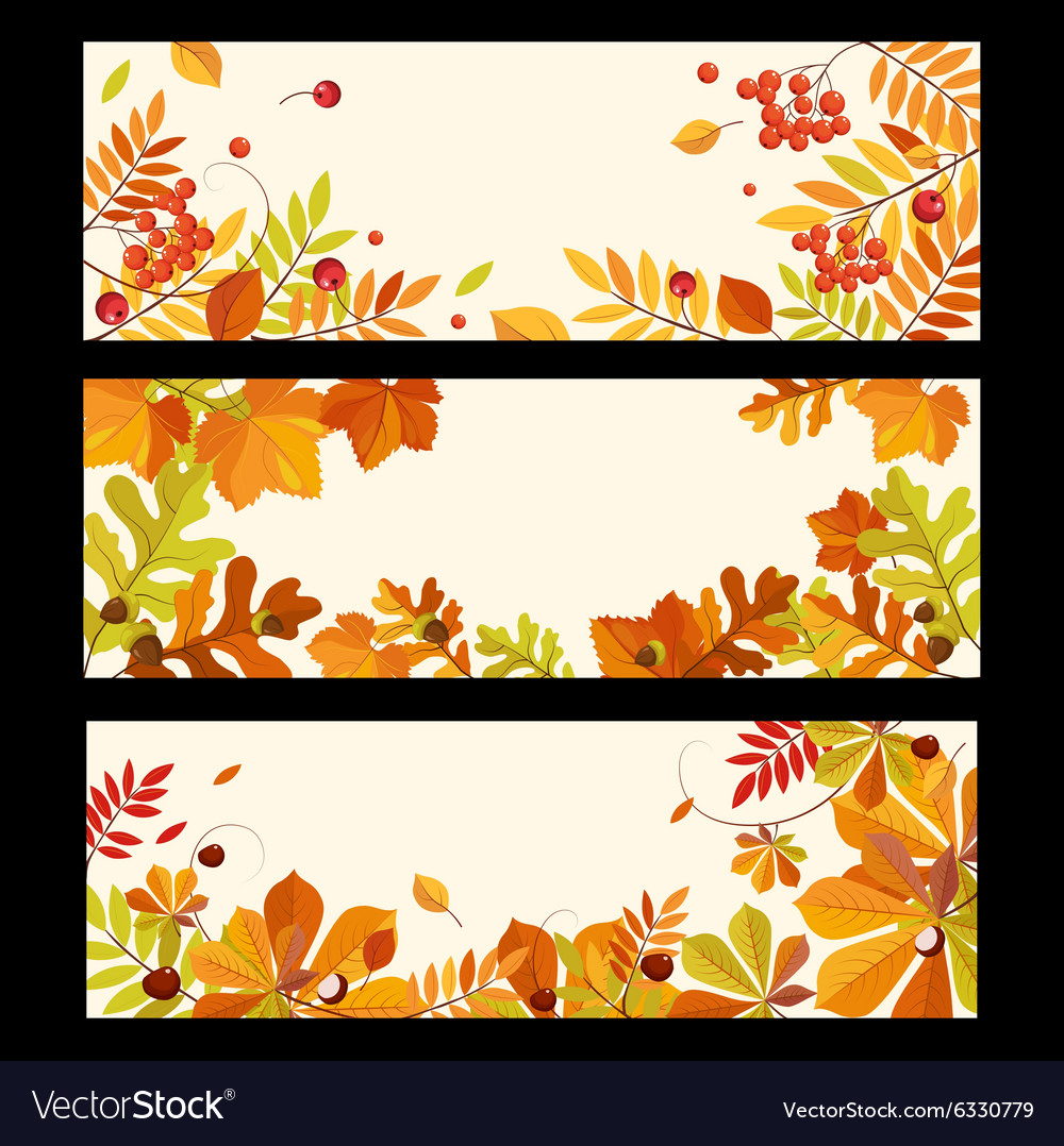 Autumn Banners with Berries and Leaves vector image