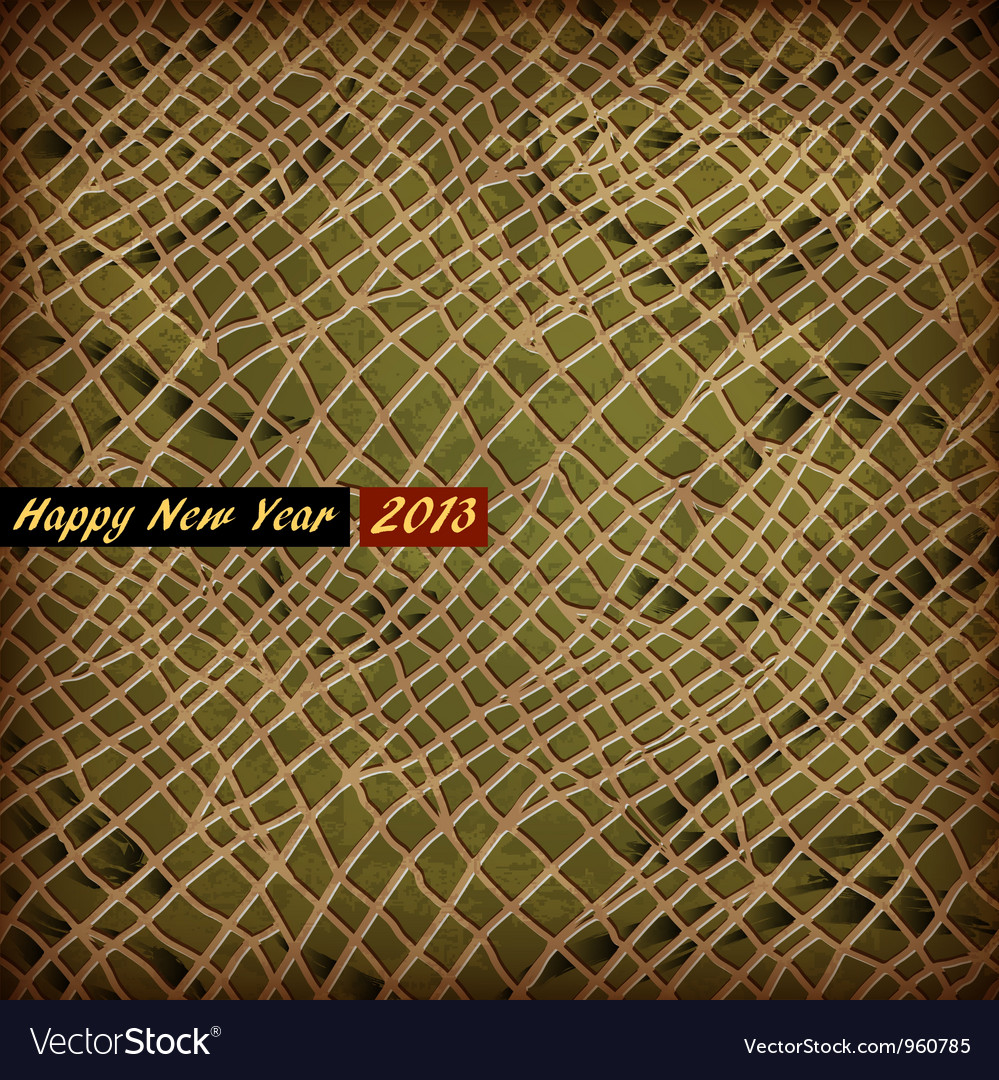 Texture of skin Snake symbol 2013 New Year vector image