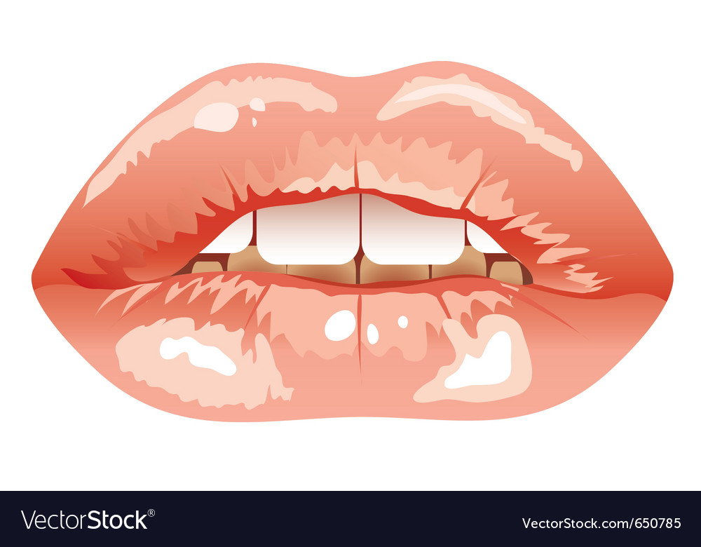 Sexual parted lips vector image
