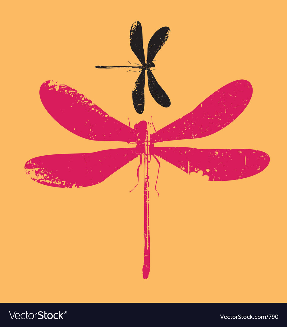 Dragonfly grunge vector image