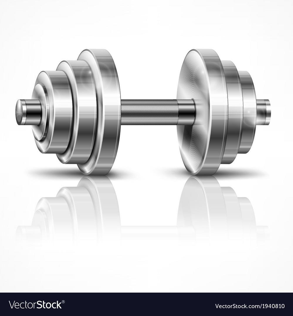 Metallic dumbbell vector image