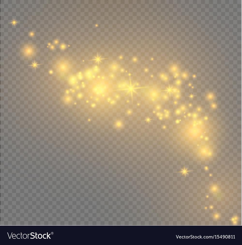 Dust on a transparent backgroundbright starsthe vector image