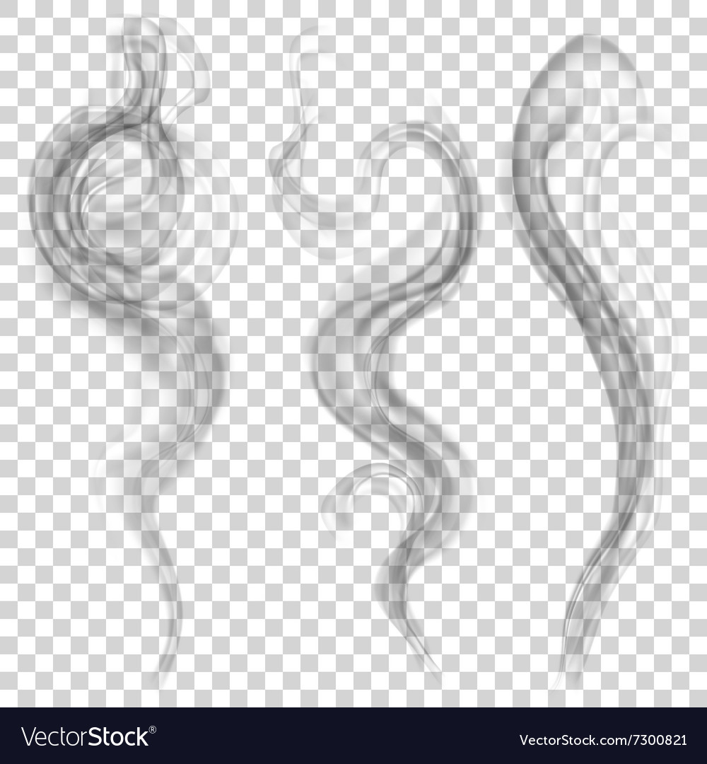 Gray smoke Royalty Free Vector Image - VectorStock