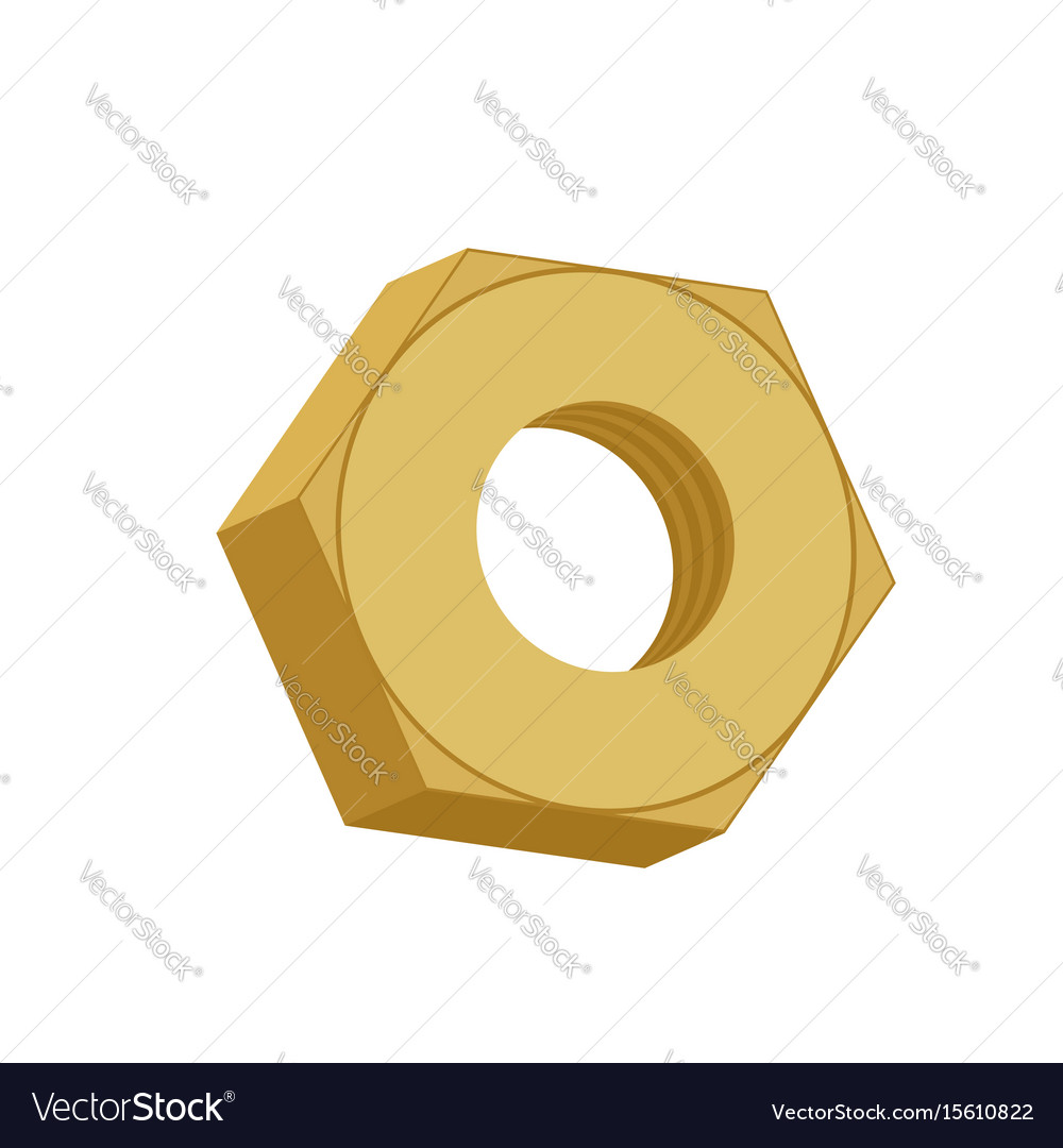 Gold nut isolated golden female screw on white vector image