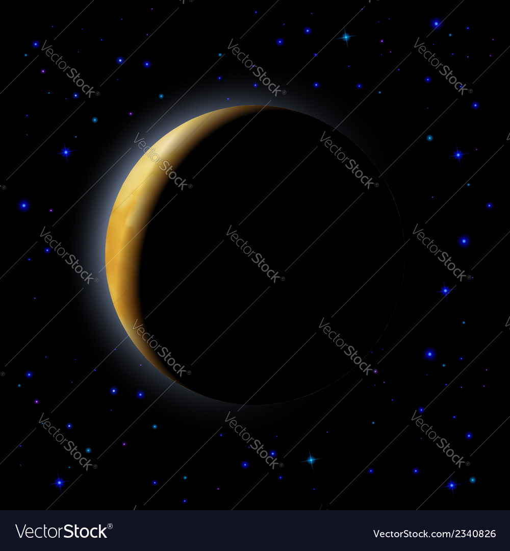 Eclipse of the moon vector image