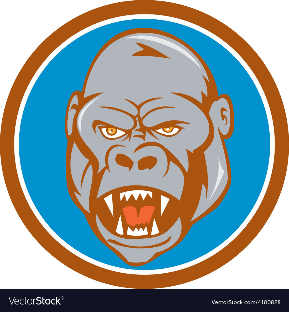 Angry Gorilla Head Circle Cartoon vector image