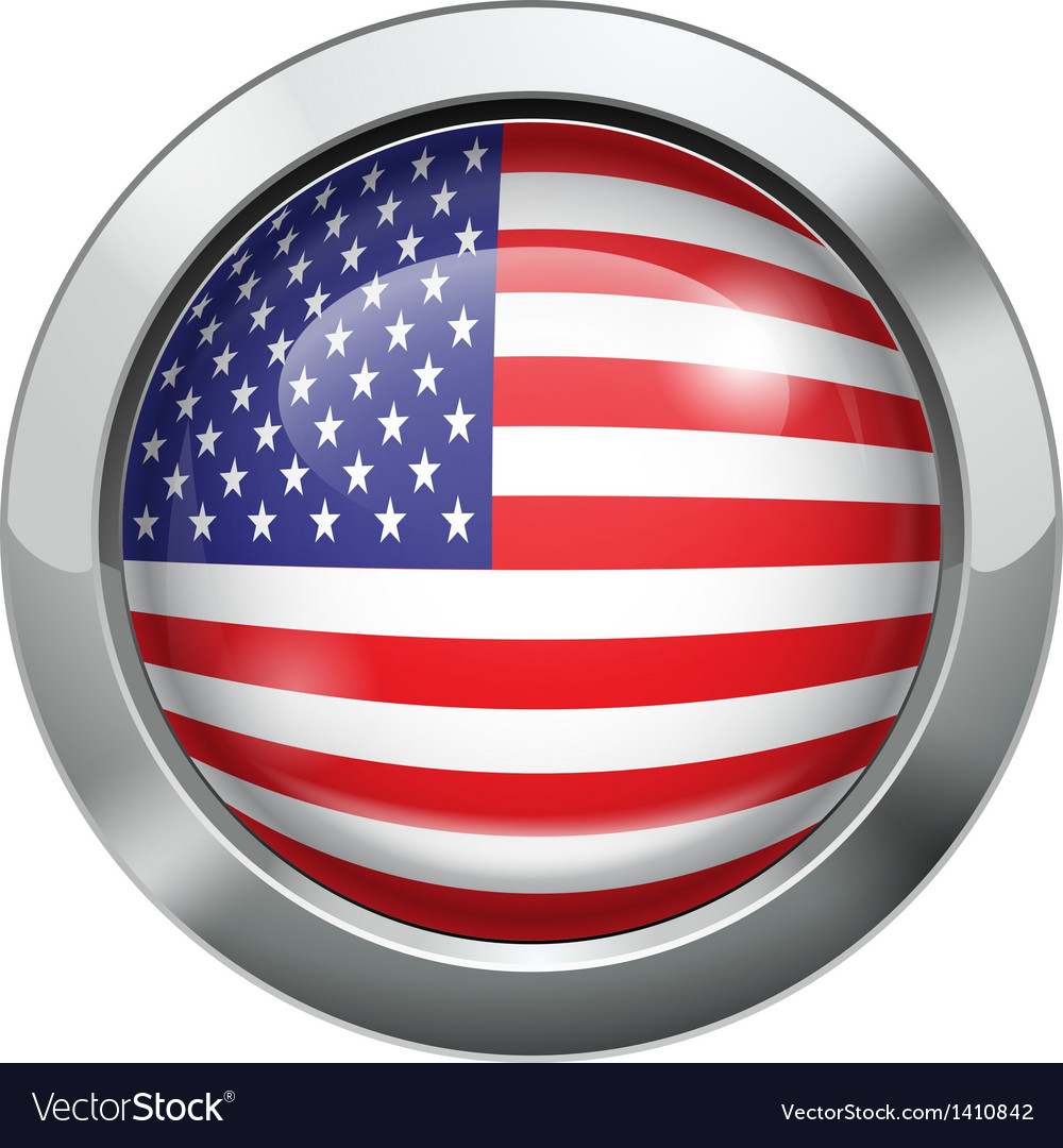America flag metal button vector image