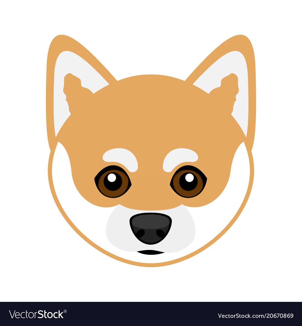Cute shiba inu dog avatar vector image
