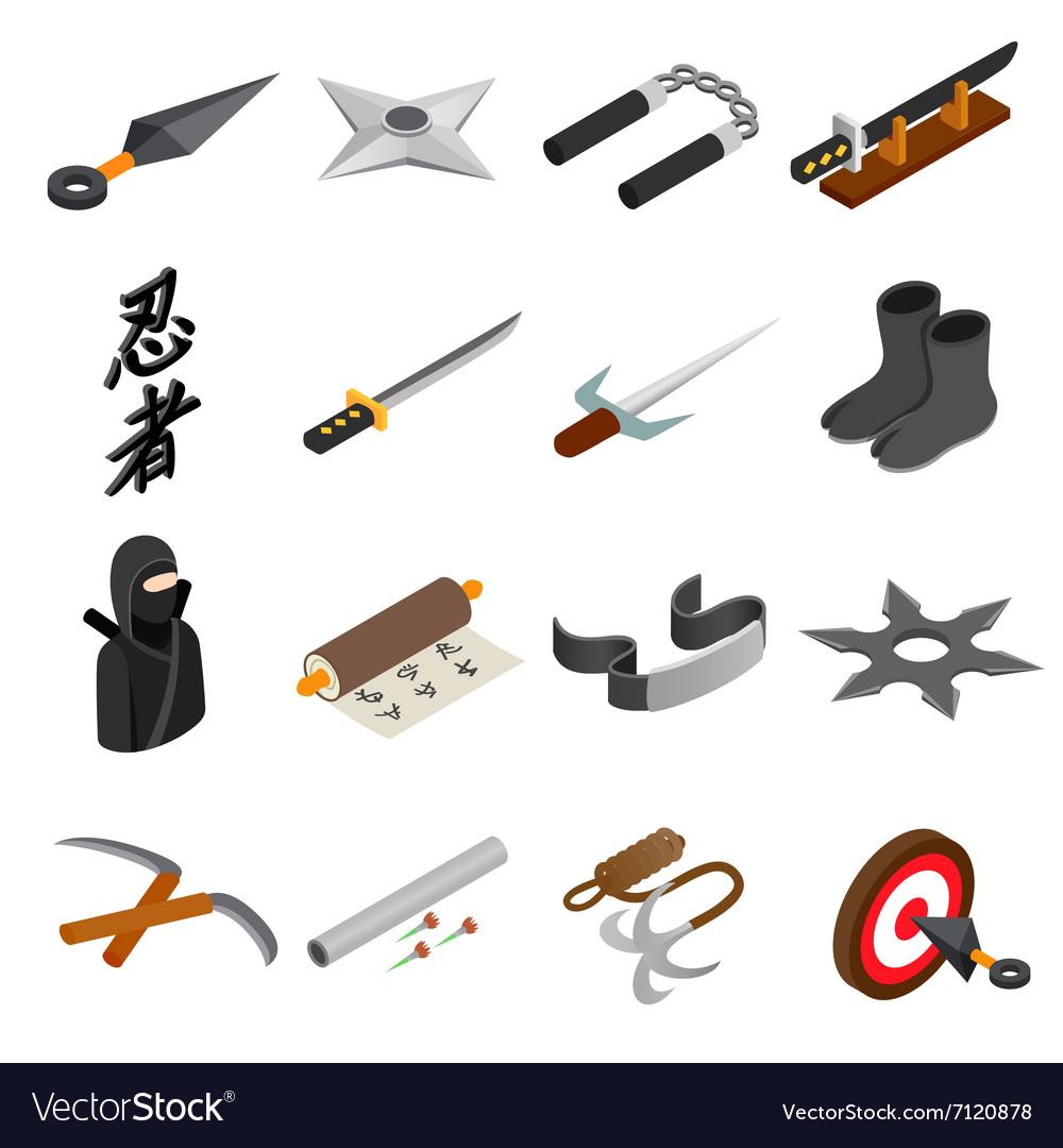 Ninja isometric 3d icon vector image