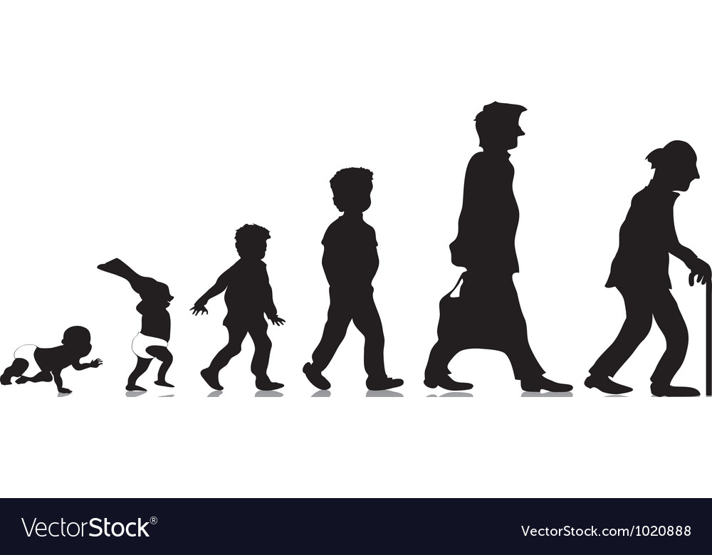 From young to old Vector Image
