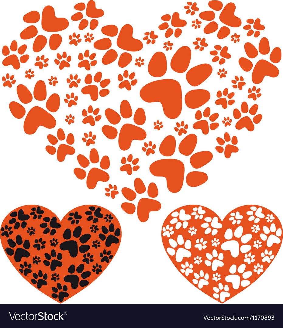 Animal paws heart vector image