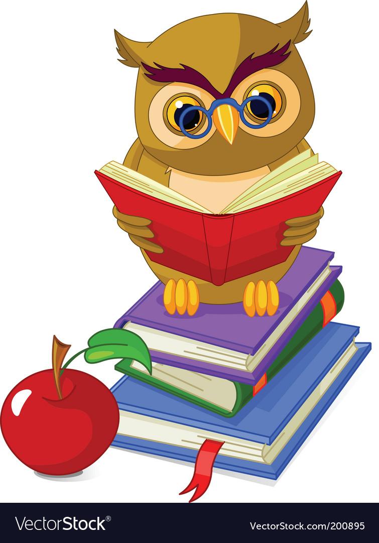 cartoon owl royalty free vector image vectorstock