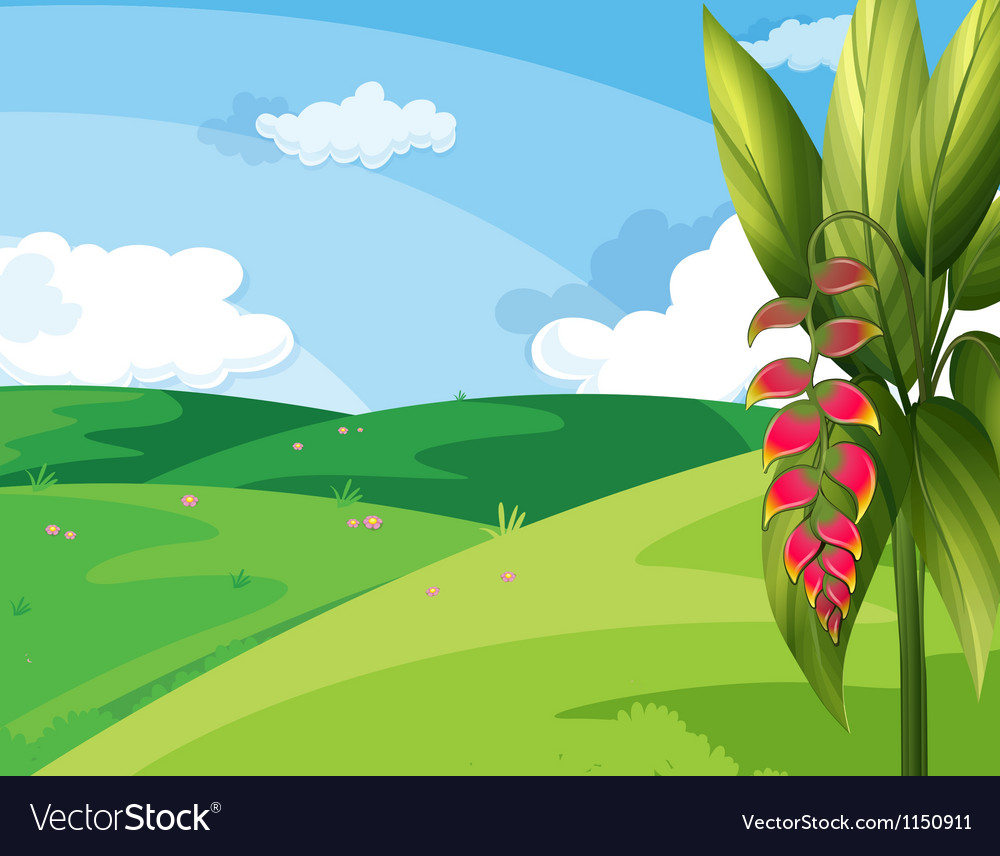 A beautiful landscape vector image