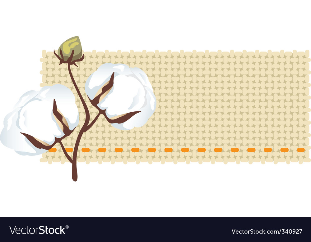 Cotton branch with label vector image