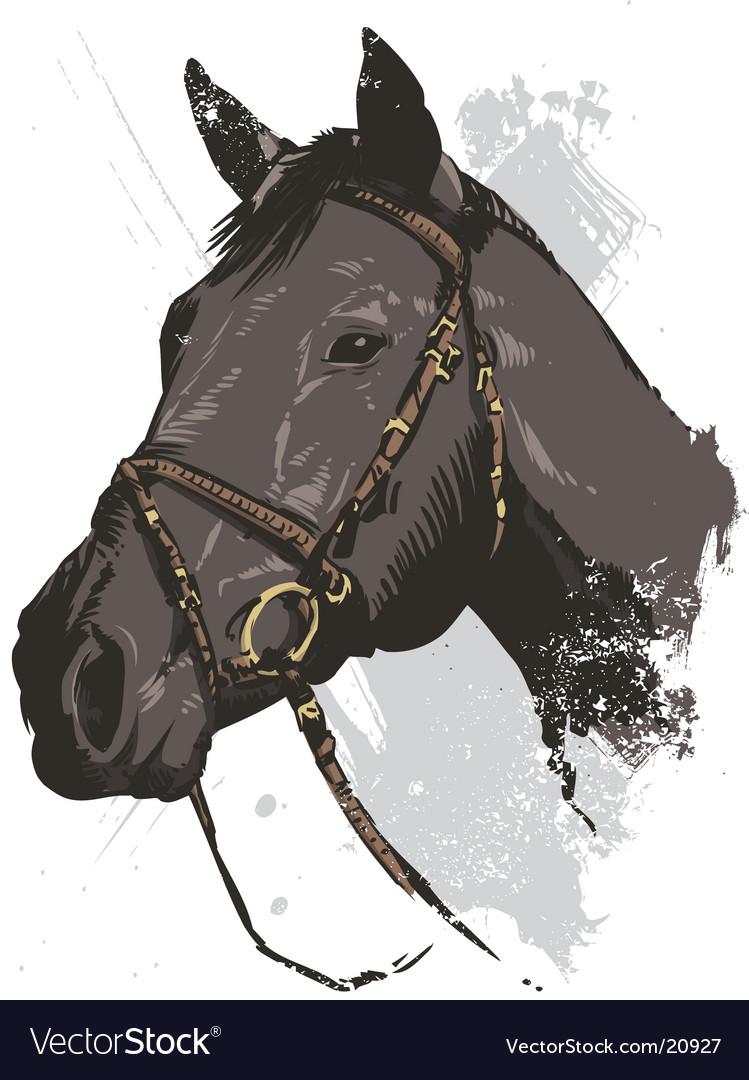 Horse illustration vector image