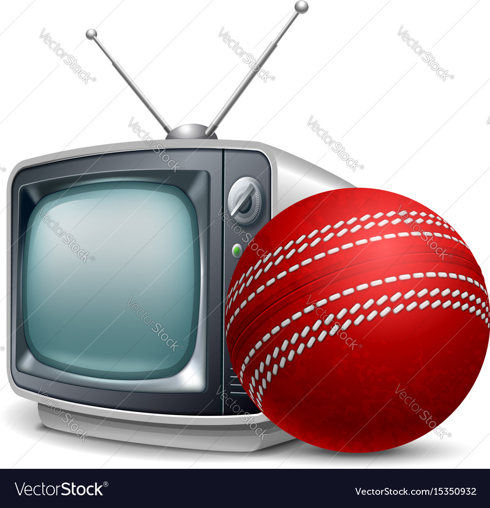 Cricket channel vector image