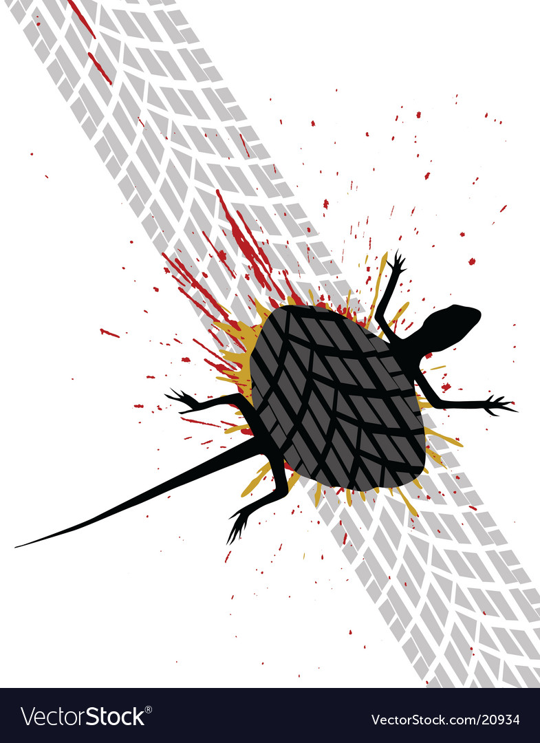 Roadkill vector image
