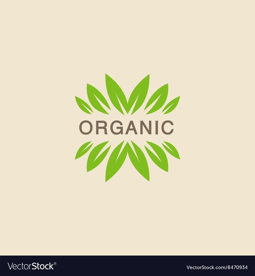 Text With Leaf Crowning Organic Product Logo vector image