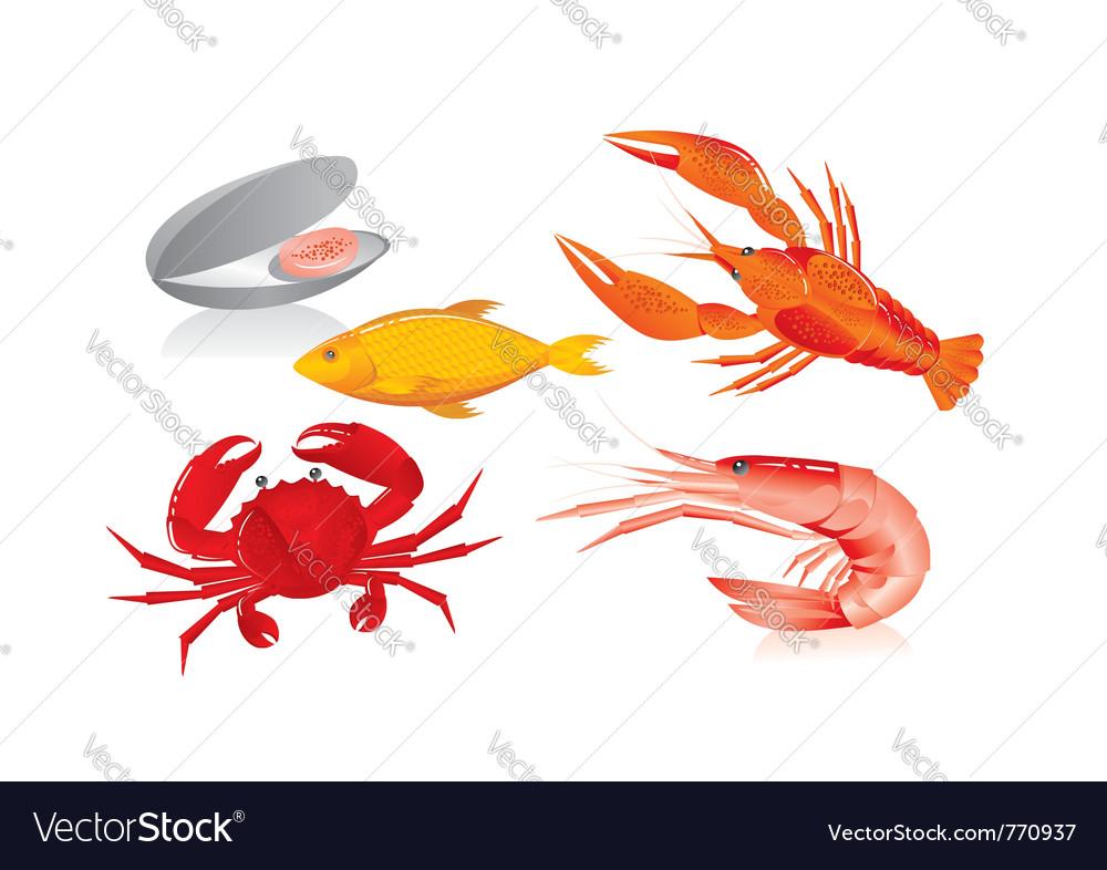 Seafood graphics vector image