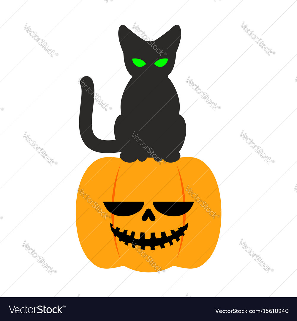 Pumpkin and black cat halloween symbol terrible Vector Image