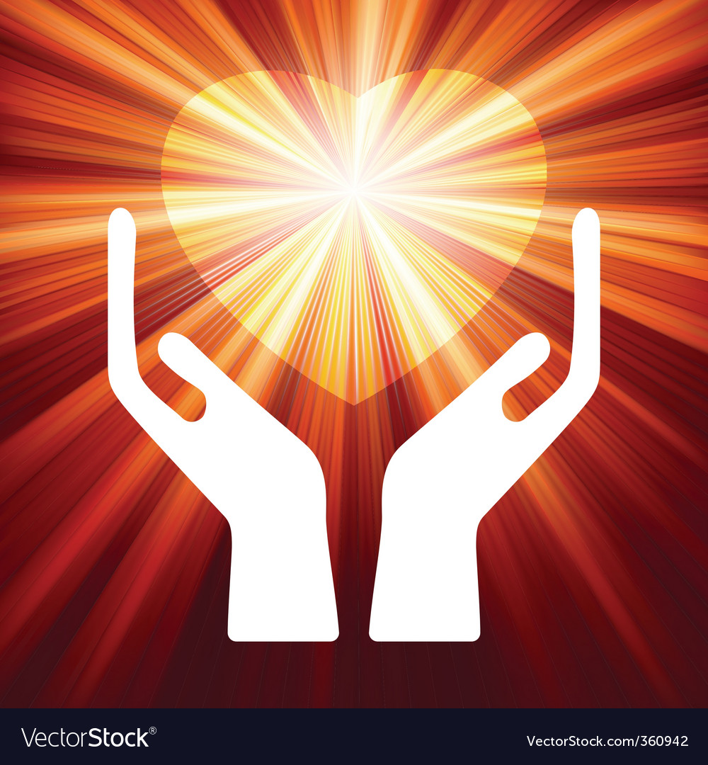 Heart in open hands  vector image