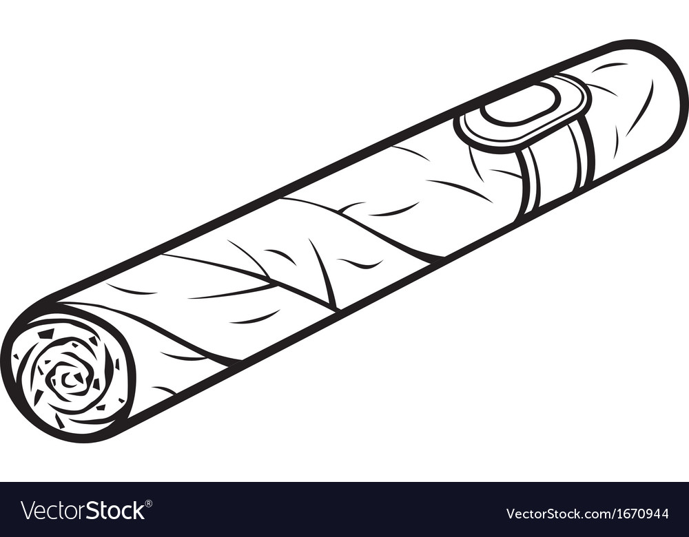cuban cigar royalty free vector image vectorstock