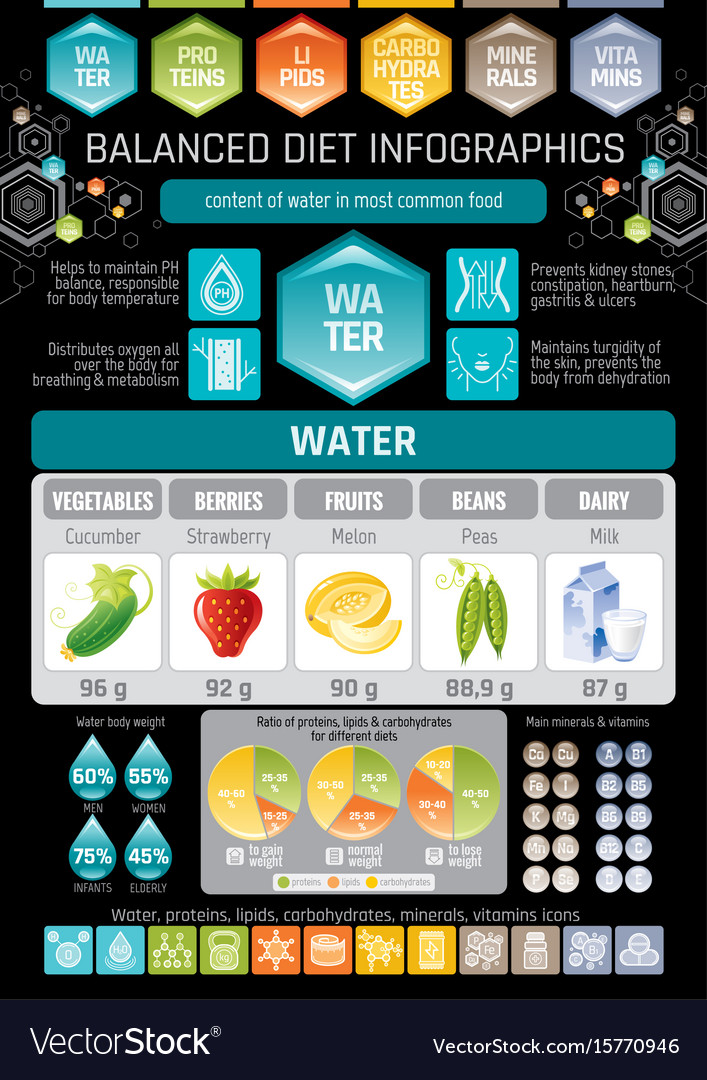 Aqua beverage diet infographic diagram poster vector image