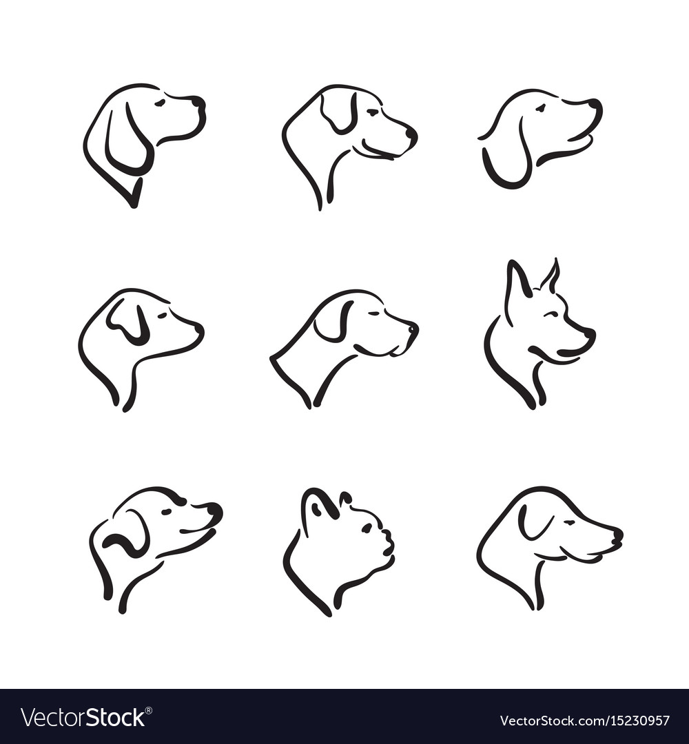 Group of hand drawn dog head on white background vector image