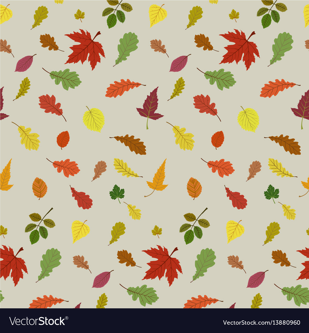 Seamless pattern with autumn leaves vector image
