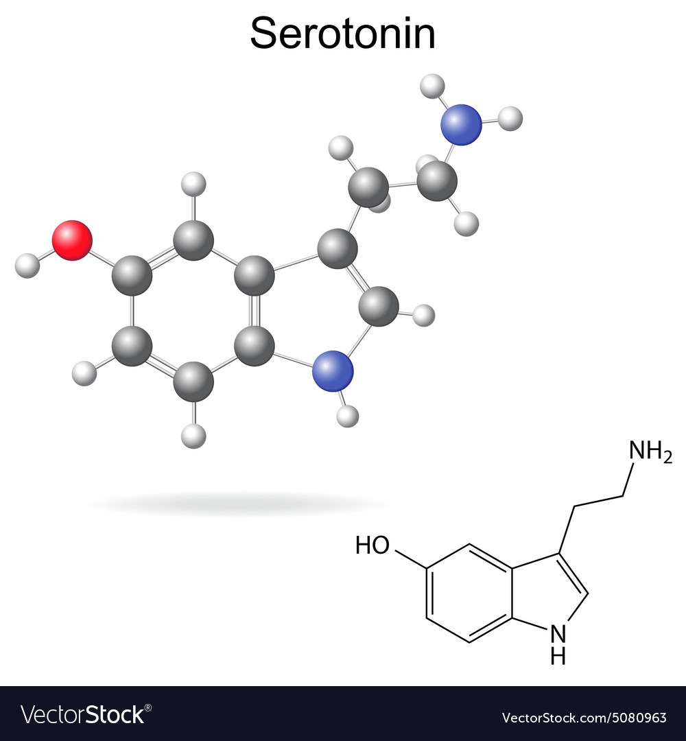 Serotonin - The Molecule of Happiness | HubPages