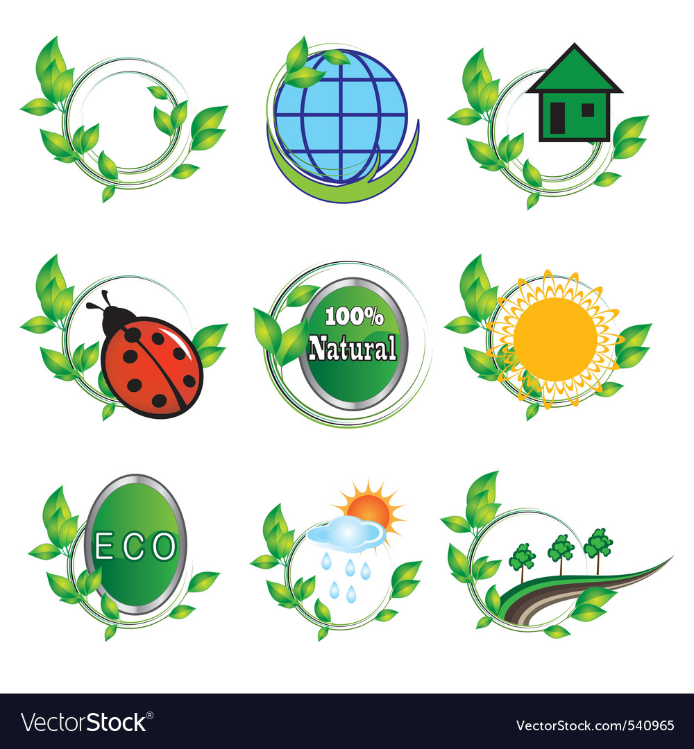 Natural elements for design vector image