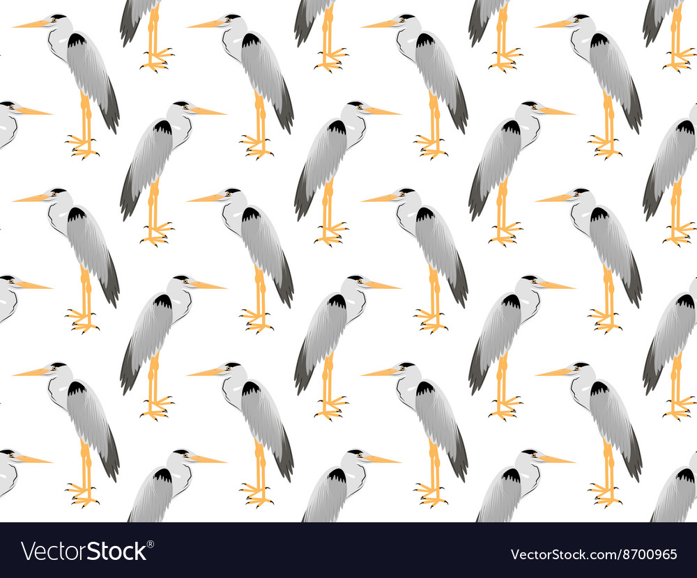 Pattern of Heron vector image