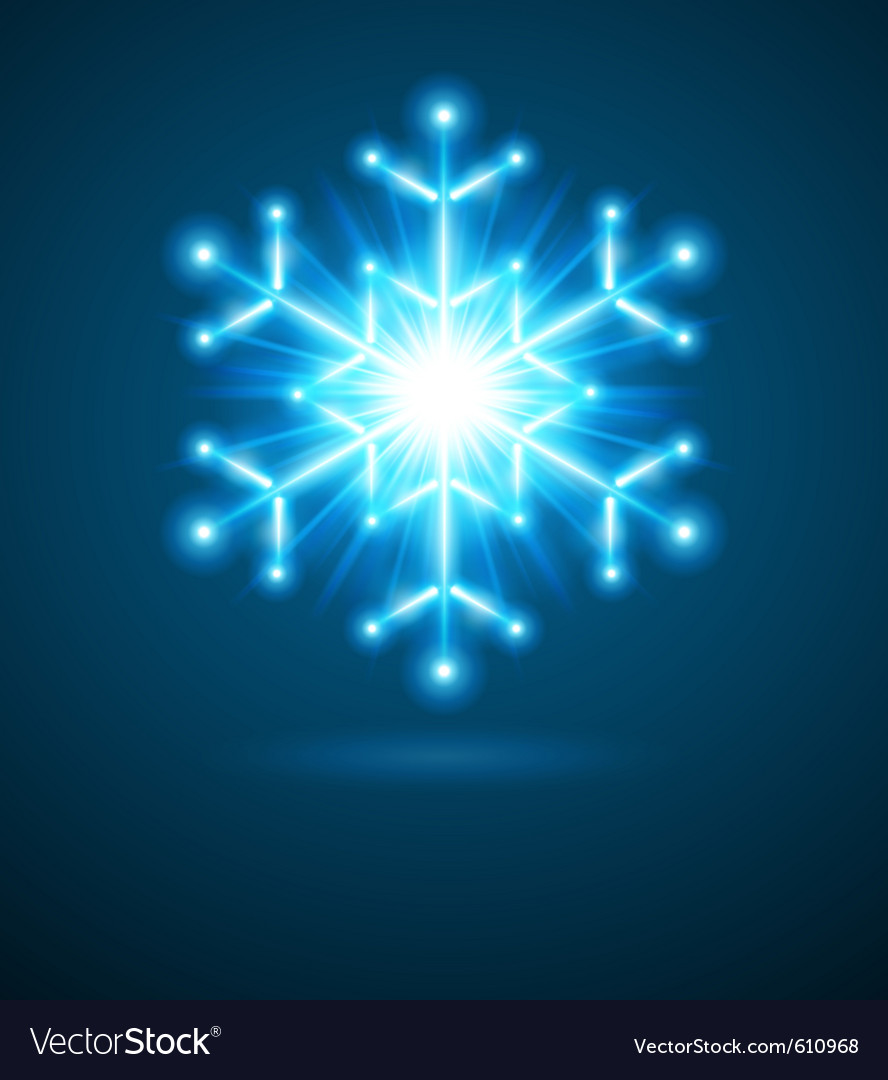 Blue snowflake vector image