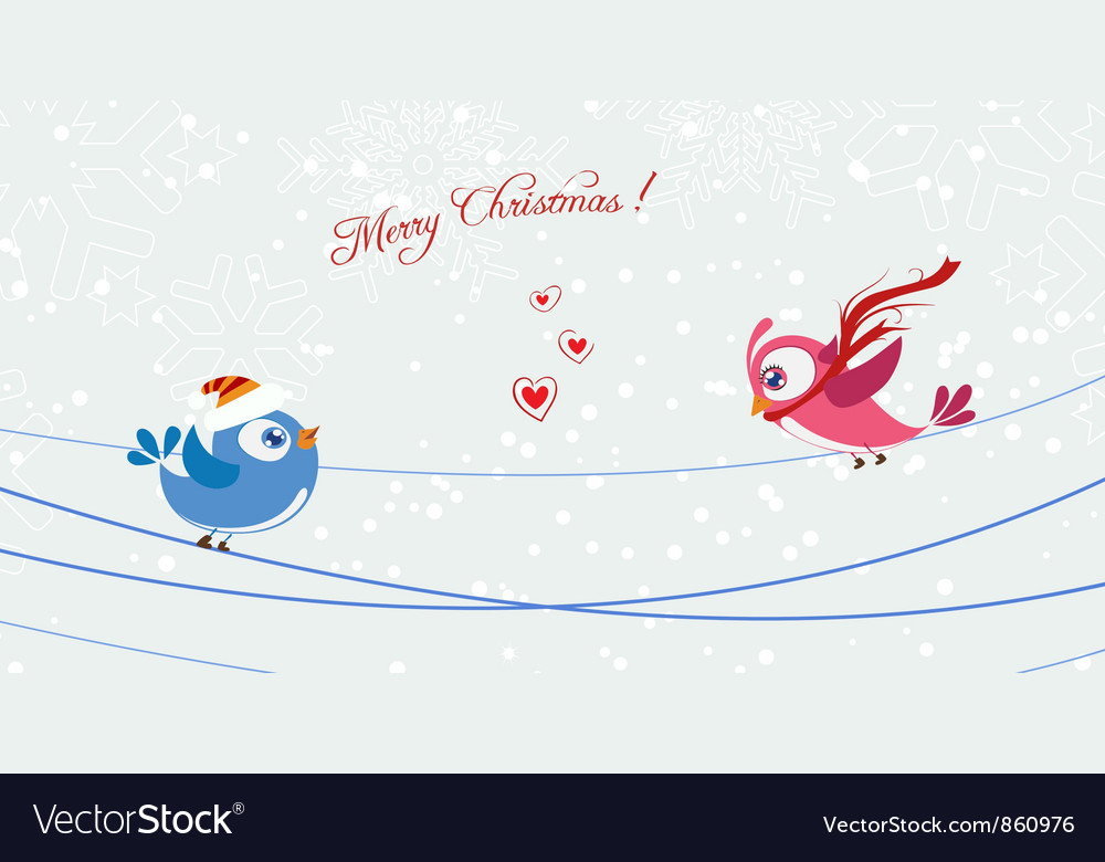 Birds with snowflakes vector image