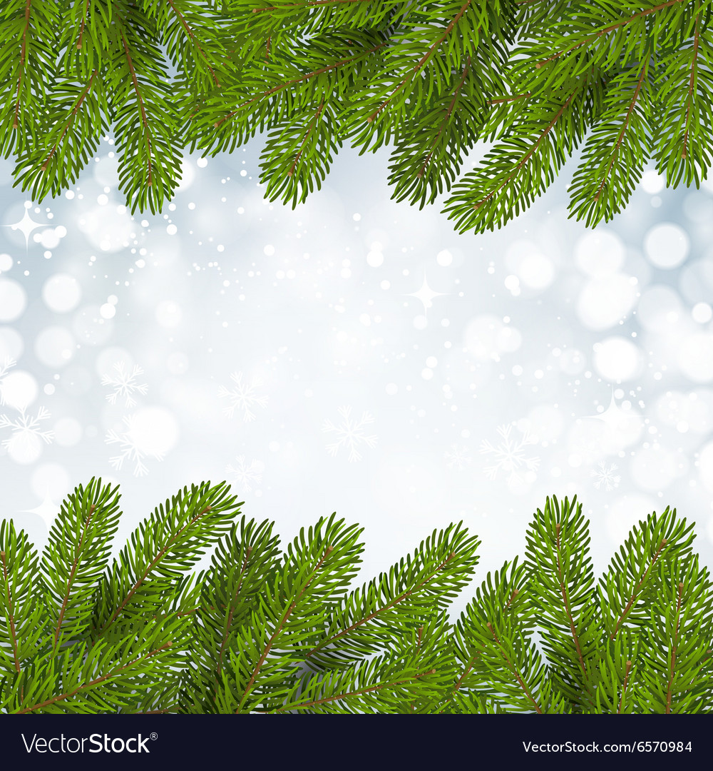 Christmas background with snow and branches vector image