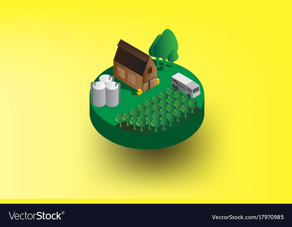 Info graphic isometric with coffee vector image