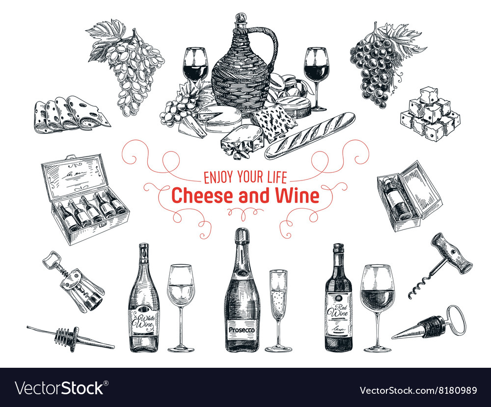 Set of vine and cheese elements vector image