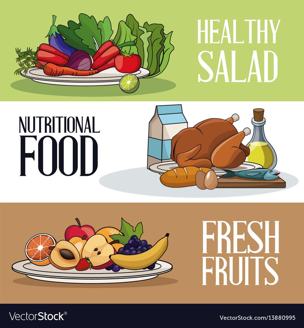 Brochure food healthy nutrition fresh vector image