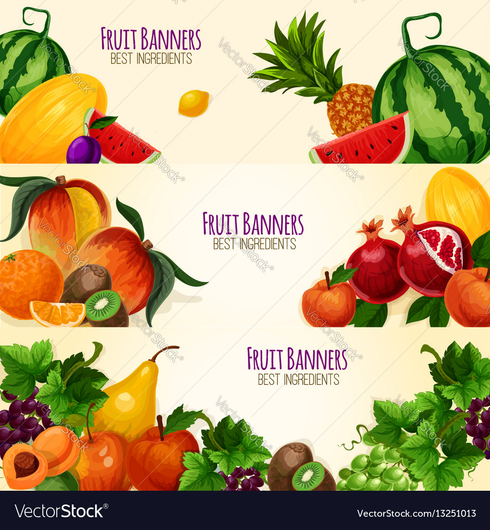 garden banners. Fruits Exotic And Garden Banners Set Vector Image A