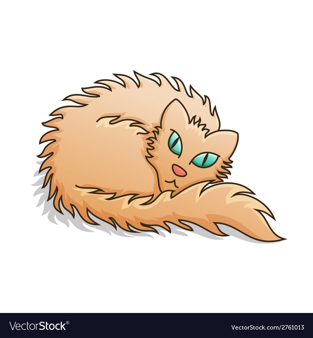 Red Fluffy Cat vector image