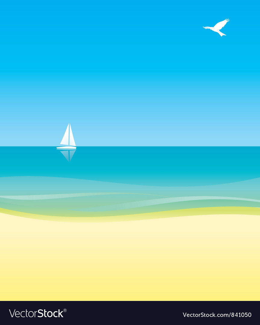 Beach bird Vector Image