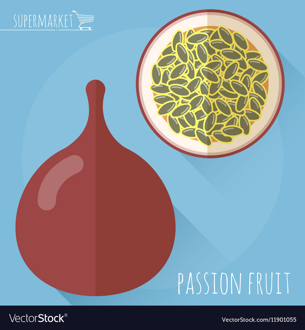 Passion fruit icon vector image