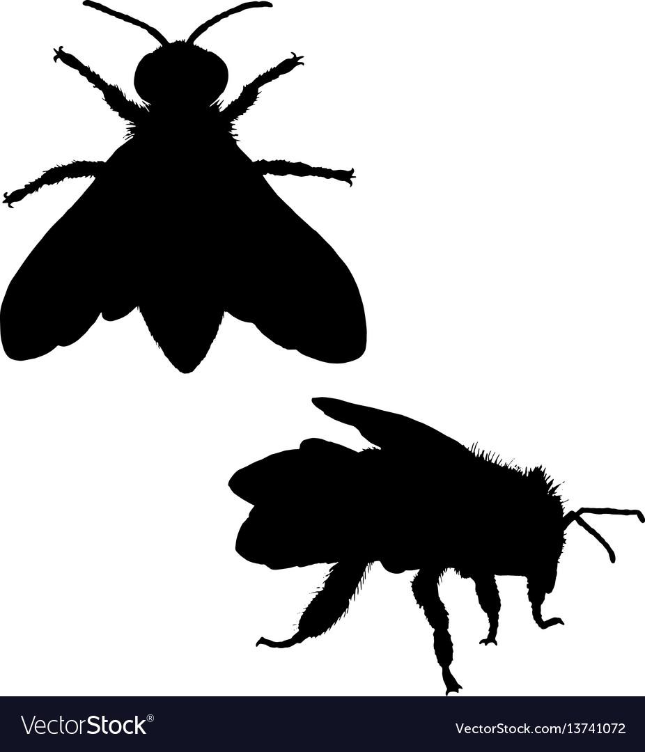Bee silhouette black white icon vector image