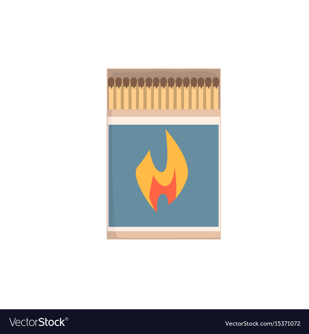 Open matchbox with matches vector image