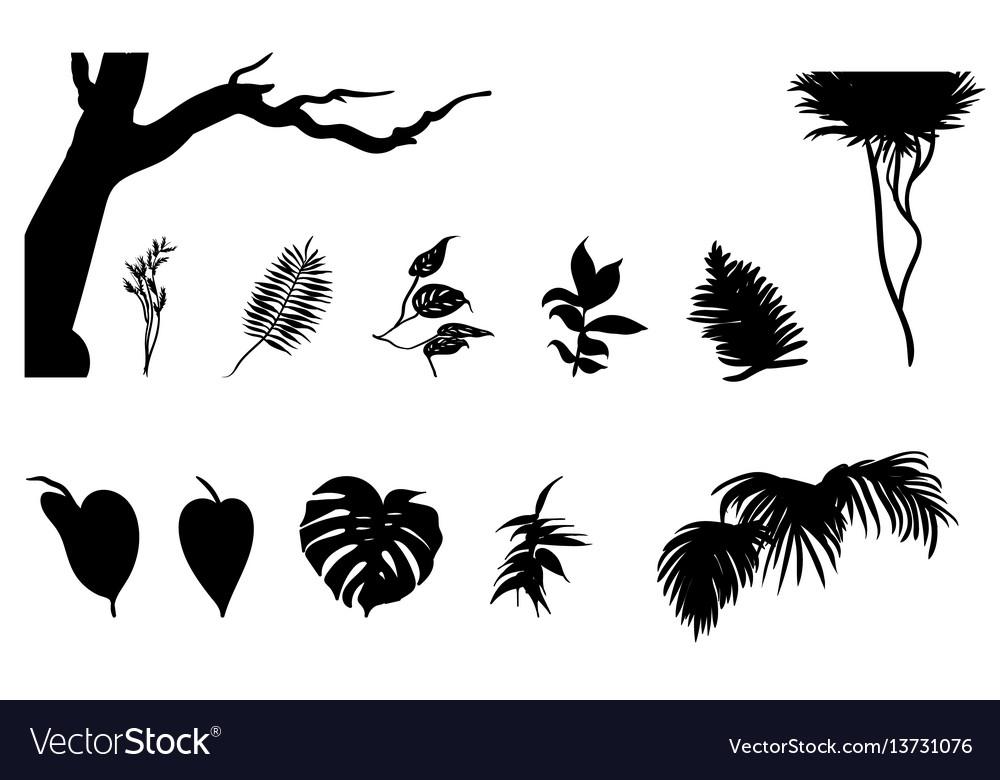 Black jungle plants silhouettes set vector image
