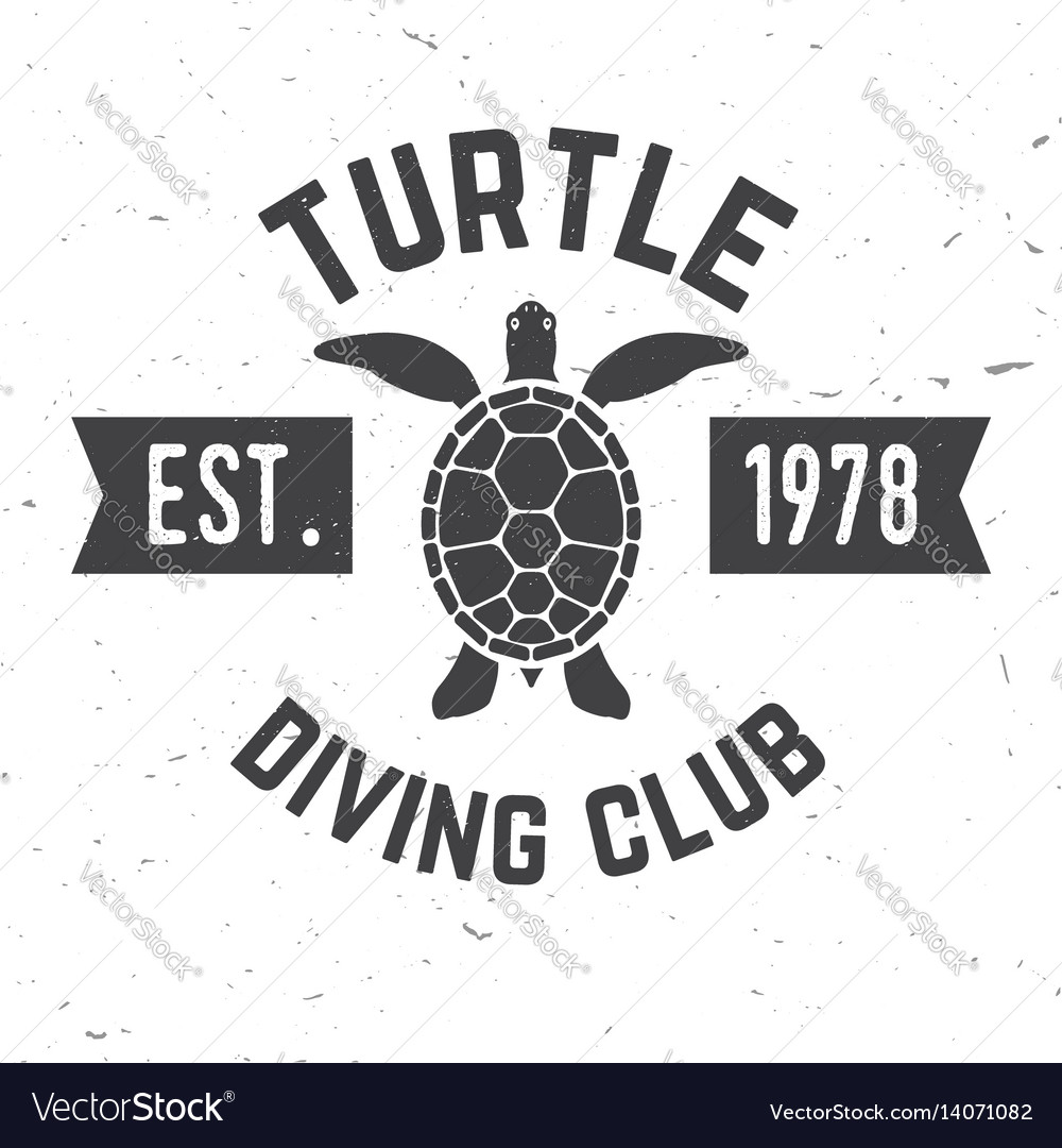 Turtle diving club vector image