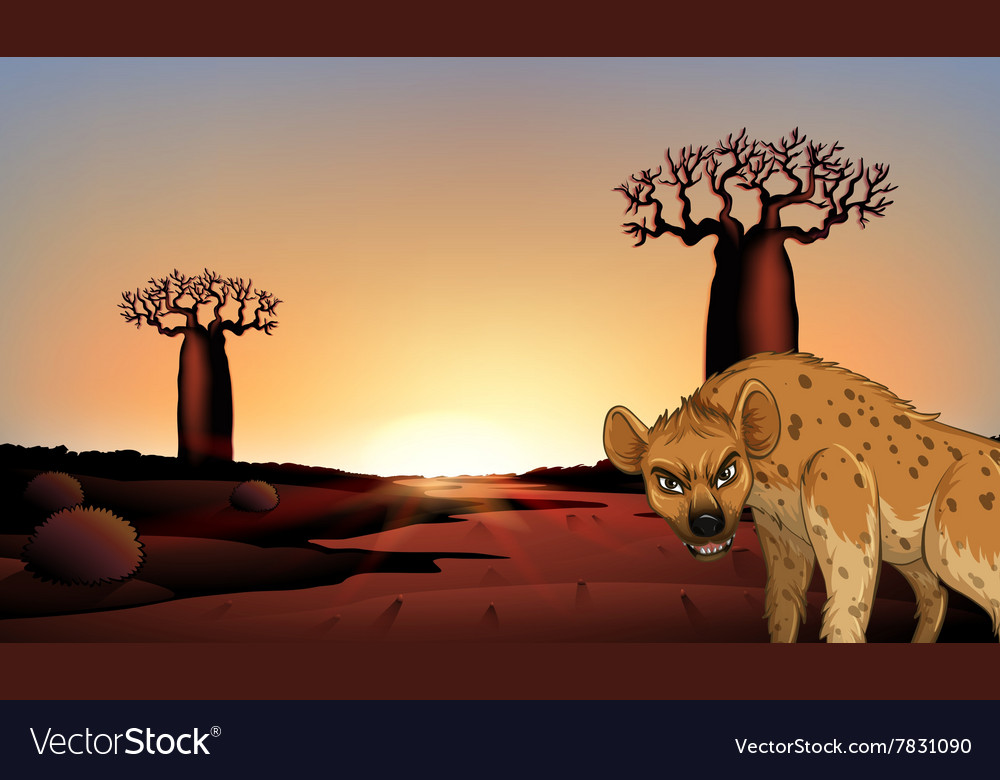 Hyena in the field vector image