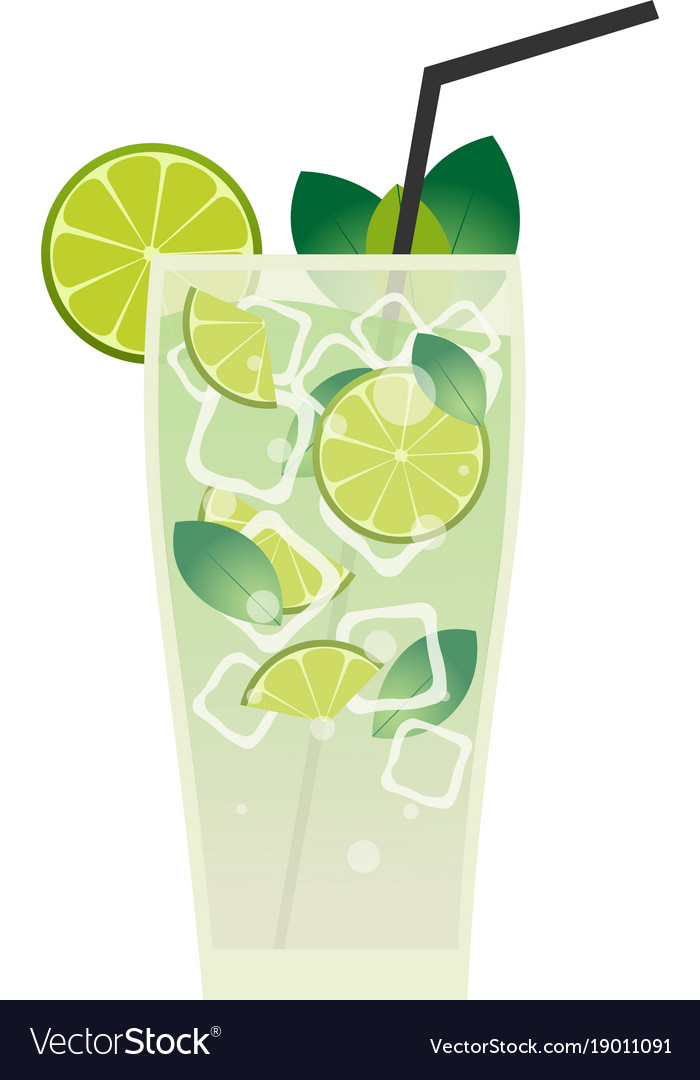 Fresh mojito with lime and green mint leaves in vector image