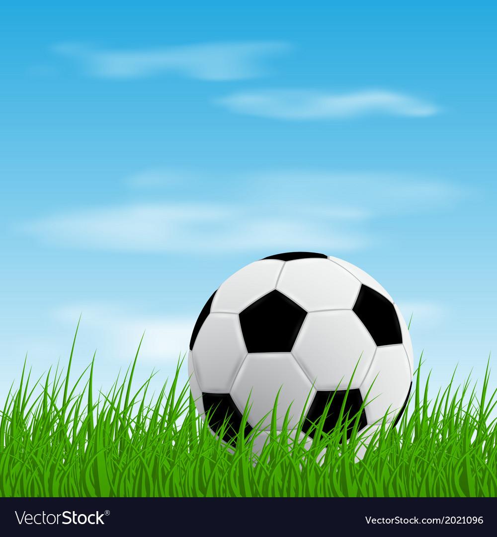Ball on grass vector image